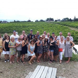 All Wine Tours
