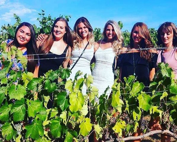 fun-in-the-vineyards